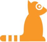 Orange Racoon