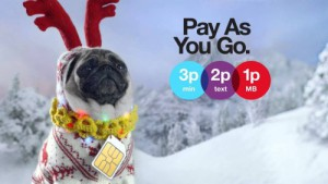 Three Pay As You Go Pug